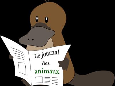 Nouveau : devenez membre du Journal des animaux !