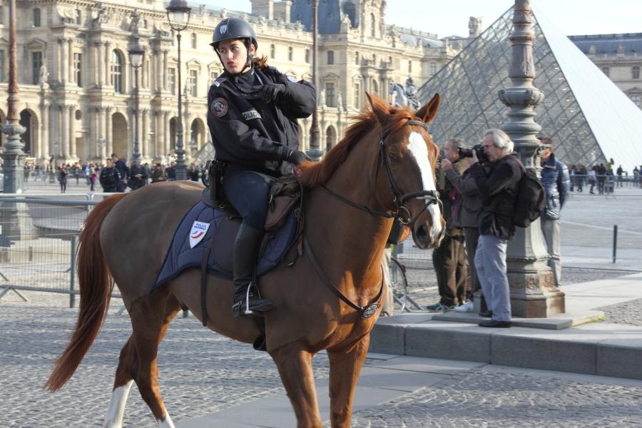 D fil de chevaux paris pour le lancement du salon du cheval for Adresse salon du cheval paris