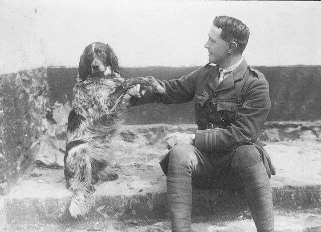 Les animaux, héros oubliés de la Grande Guerre . Mc_crae_chien_bonneau