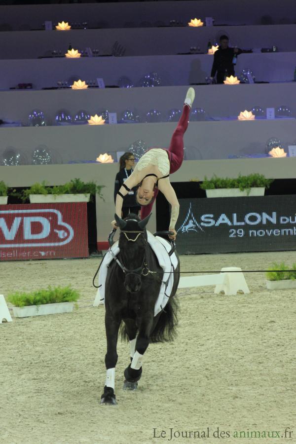 Salon du cheval de paris place l dition 2014 for Salon du cheval a paris
