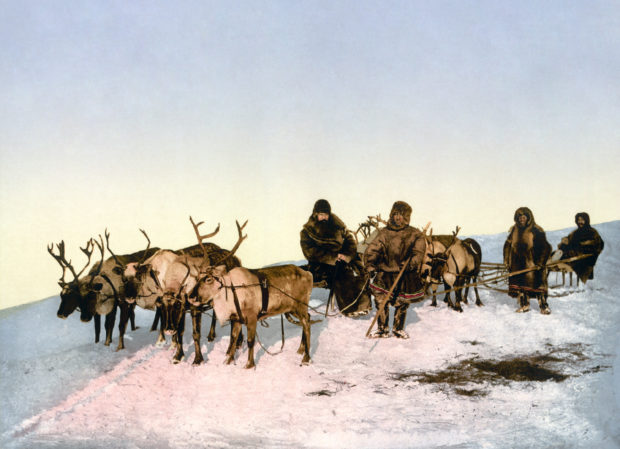 Traveling by reindeer, Arkhangelsk, Russia — Detroit Publishing Co./Public Domain